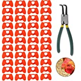 Lainrrew 41 Pcs Pinless Peepers with Pliers Set, Poultry Blinders Chicken Peepers Chicken Spectacles Anti-Pecking Pheasant Eye Glasses (Red)