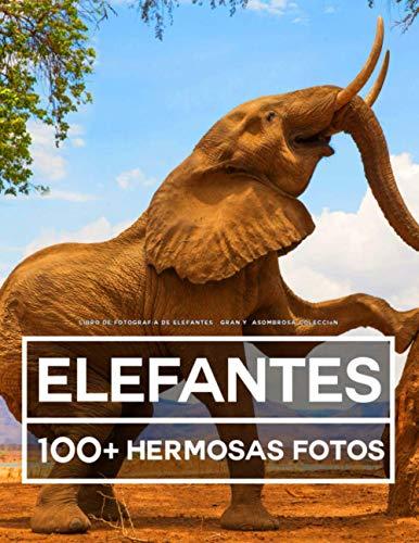 Libro De Fotografía De Elefantes – Gran Y Asombrosa Colección: 100 Hermosas Fotos En Este Fantástico Libro De Elefantes - Libro De Fotos De Animales Para Niños y Adultos