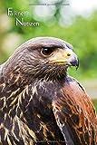 Falkner Notizen: Falkner Notizen. Notizen und Journal für den Falkner, die Falknerin. Dezent grau liniert. Bussard Portrait