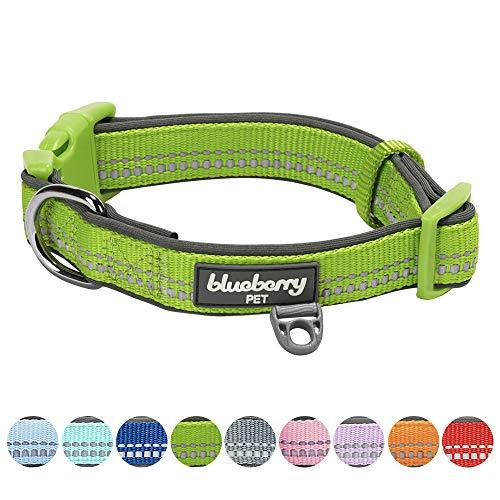 Blueberry Pet 2cm M 3M Reflektierendes Neopren-Gepolstertes Hundehalsband in Grün, Mittlegroβe Halsbänder für Hunde