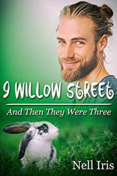 And Then They Were Three (9 Willow Street Book 1) by [Nell Iris]