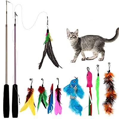 Bojafa [15 in 1] Cat Feather Toys with 2 Retractable Teaser Wand, Replaceable Cat Teaser Feathers Toys Refills for Indoor Cats Kitten Interactive Train