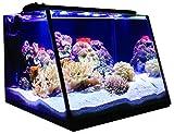 Lifegard Aquatics Full-View 7 Gallon Aquarium with LED Light,...