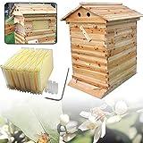 SENDERPICK 7 Auto Flow Honig Beehive Frames - Kit per Coltivazione di api, Automatico Flow Bee Hive, Honig FOW, con 7 cornici Flow
