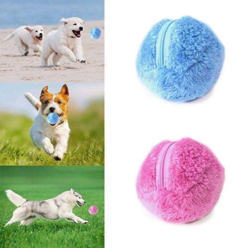 Dragon Honor Lustiger, elektrischer Spielball für Hunde – hält Ihren Hund aktiv und gesund