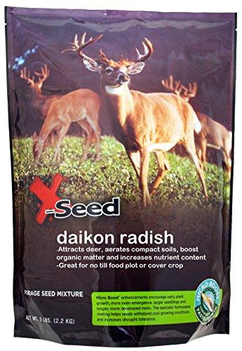 X-Seed 20213 Daikon Radish Food Plot with...