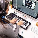 Zoom IMG-1 alesis v25 m audio sp