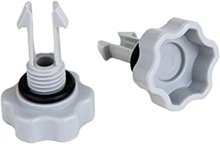 small air release valve