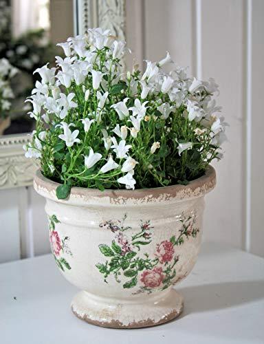 Chic Antique Blumentopf ° Toulouse ° mit romantischem Rosenmuster Gr. M * Shabby Chic Creme Rosen Pokal Übertopf antik
