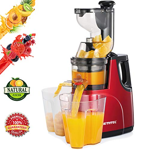 Masticating Juicer Machines, Hethtec Cold Press Juice Extractor with Large Double-Chute and Clean...