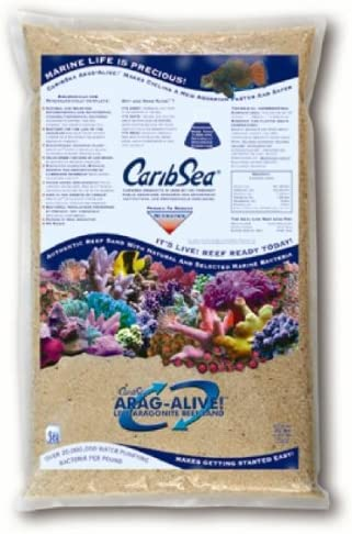 Arag-Alive Bahama Oolite Sand in Indefinitely Set 20 2 l Tulsa Mall - of