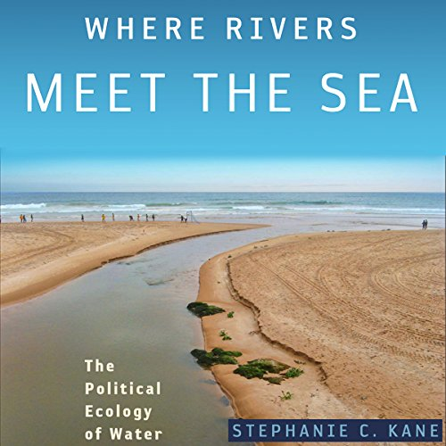 Where Rivers Meet the Sea audiobook cover art