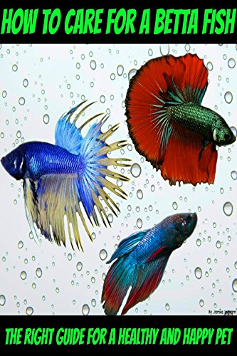 How to care for a betta fish – The right guide for a healthy and happy pet (English Edition)