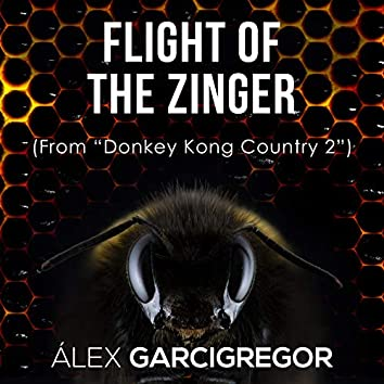 """Flight of the Zinger (From """"Donkey Kong Country 2"""")"""