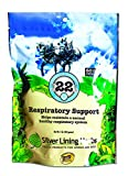Silver Lining Herbs 22 Respiratory Support for Horses - Supports Normal Function Of The Lungs - Helps Keep Airways Clear - Assists Horse's Body In Combating Environmental Pollutants - 1 lb Bag