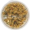 Monoprix - Fusilli tomates, feta, olives, roquette - La Salade