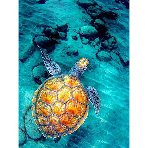 """Lznxzq 5D DIY""""Swimming Turtle Animal""""Diamond Painting kit by Number Painting Embroidery Cross Stitch kit Art 40X50cm No Frame"""