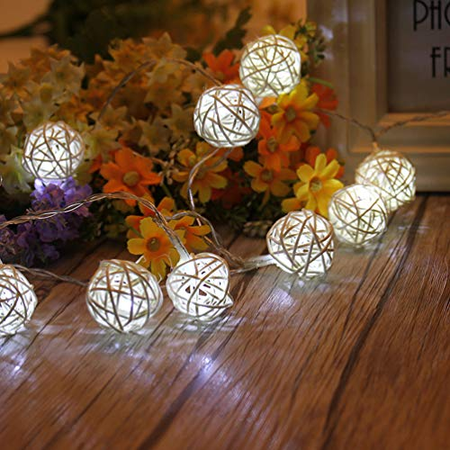 LEDMOMO Globe Rattan Ball String Lights,4.9feet 10 LED Pure White Fairy Light for Indoor,Bedroom,Patio,Lawn,Landscape,Fairy Garden,Home,Wedding,Christmas Tree,Party
