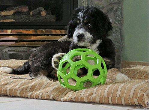 Nalmatoionme Creative pour animal domestique Roller jouet pour chien en caoutchouc
