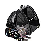 Texsens Cat Backpack Carrier, Super Breathable Carrier Backpack, Airline-Approved Bubble Cats and Puppies Backpacks, Designed for Hiking, Travel& Walking (Grey)