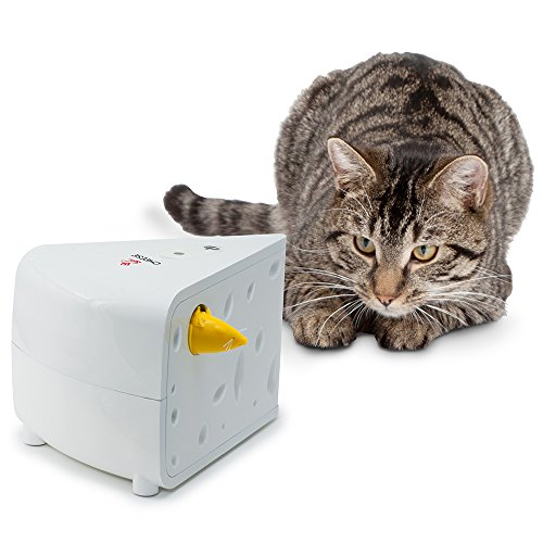 PetSafe 猫用おもちゃ 愛猫用電動おもちゃ フローリーキャットチーズ PTY18-15050