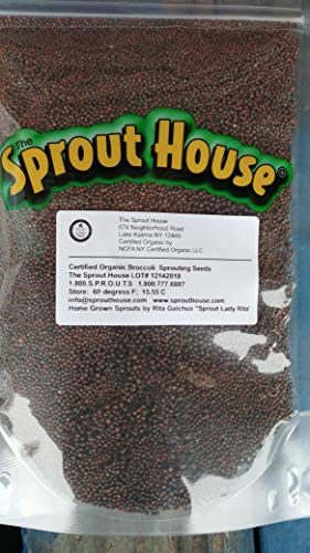 The Sprout House Certified Organic Non-GMO Sprouting Seeds Broccoli 1 Pound - 16 Ounces