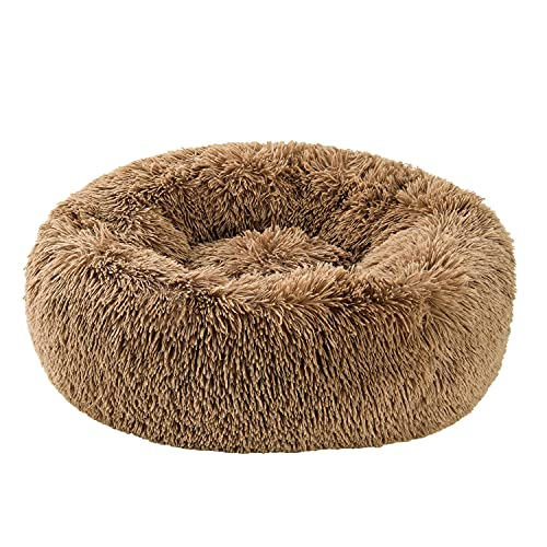 Small Dog Puppy Bed Washable Calm Dog Bed Comforting, Anti-Anxiety, Fluffy deep Sleep Plush Bed Donut cat Bed Super Soft with pet Blanket 19' x 19' x 6', Suitable for Pets up to 10 lbs