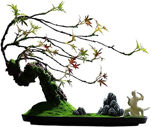 Scultura,Árbol De Bienvenida Artificial Pino Bonsai Decoración De Escritorio Regalo Planta En Maceta De Imitación Piedra De Montaña Tallada Artificial 17 3 Alto X 19 3 Decoración De Bonsái Fal