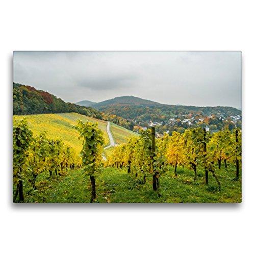 Premium Textil-Leinwand 75 x 50 cm Quer-Format Goldenes Weinlaub | Wandbild, HD-Bild auf Keilrahmen, Fertigbild auf hochwertigem Vlies, Leinwanddruck von Thomas Leonhardy