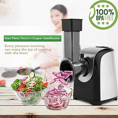 Bunao Eléctrico En Espiral Cortador de Verduras Patatas Frutas, Mini Máquina de Cortar Espiral Incluye 5 Accesorios para Cortar, 150W (Cortadores para Patatas y Vegetales)