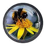 Eine Biene Kristallglas Möbelgriff mit Edelstahlschrauben 4 STÜCKE Möbelknöpfe Bunte Knöpfe Möbelschrank Schubladenknöpfe , Stilvoller Schubladengriff für Schlafzimmer Wohnzimmer Kinderzimmer