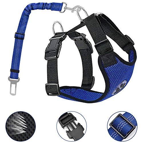 Lukovee Double Hundegeschirr mit Sicherheitsgurtfür alle alltäglichen und sportlichen Aktivitäten dem Vierbeiner luftdurchlässiges Reguläre Reisenweste Autosicherheitsgurt (M, Hellblau)