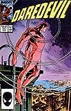 Daredevil, Vol. 1: Black Christmas, NO. 241