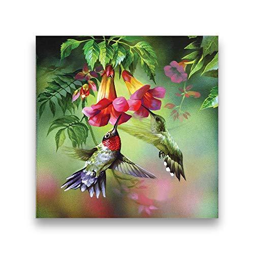 DBGS 5D knutselen diamant borduurwerk vogels becqueter bloemen bijzondere vorm knutselen kristal diamant schilderij decoratie geschenk voor vriend, S