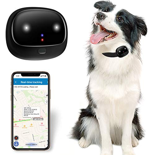 BARTUN GPS Dog Tracker for Cat Dog Collar, Health & Location Pet Tracking Smart Collar Device with...