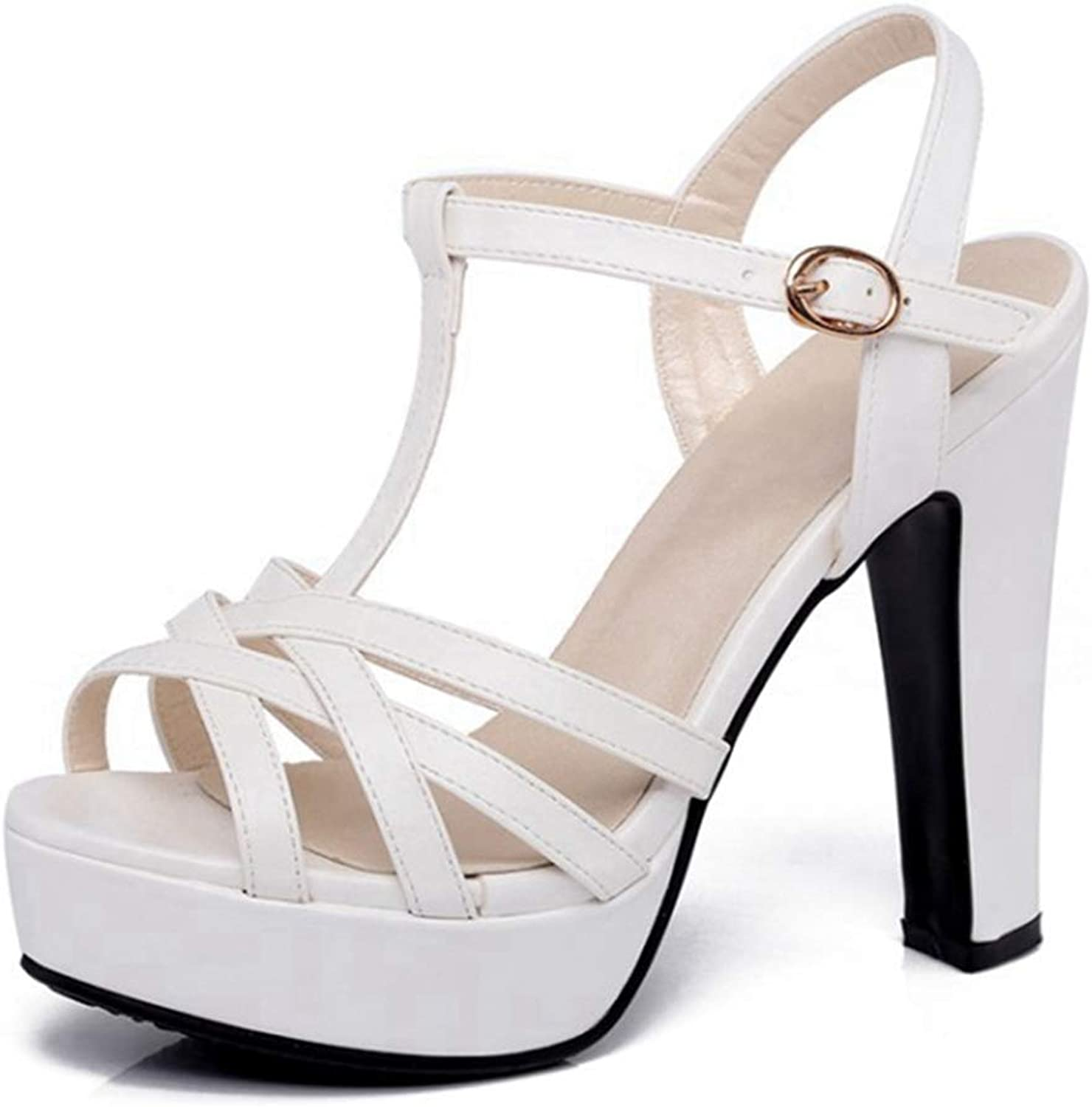 Fullwill Women's Peep Toe Buckle Ankle Strap Chunky High Heel Platform Dress Sandals