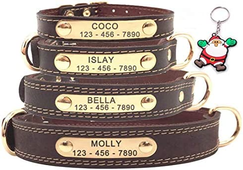 SLZZ Premium Personalized Custom Leather Dog Collar with Engraved Nameplate ID Tags Soft Touch product image