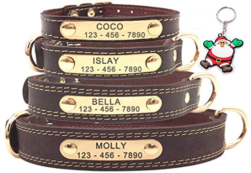 SLZZ Premium Personalisiert Hundehalsband aus Leder, mit graviertem Namensschild, personalisierbar, weiche Haptik, strapazierfähiges Echtleder, verstellbar, perfekt für kleine Hunde