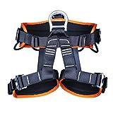 BJYX Arnés De Escalada, Arnés De Seguridad De La Cintura,para Montañismo, Rescate De Incendios, Escalada En Roca, Trepando Árboles, Cinturón De Seguridad para Trabajo (Color : Orange)