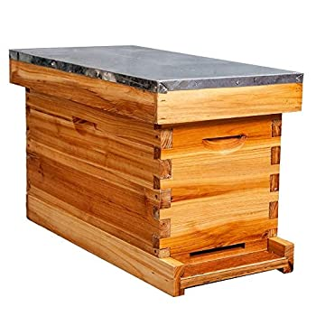 5-Frame Nuc Beehive for Bees Complete Bee Hive Box Kit with Metal Roof Includes Wooden Frames & Waxed Foundations for Langstroth Beekeeping