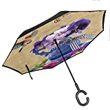 flyrio Country Decor Collection Inverted Umbrella Small Bluebirds Hummingbirds Pansy Flowers with Blue Vase on a Vintage Letter Auto Open and Close Travel Umbrella, Purple Beige