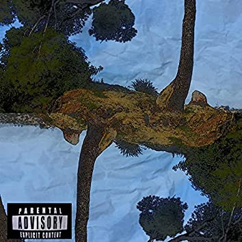 NO SHADE (feat. 818 SUKI, ARTIS JEFE & AURA BLUU)