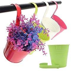 Idea Regalo - 10 Pz 10 cm metallo colorato vasi per piante sospese con gancio staccabile, vasi da fiori recinzione giardino appeso titolare di fiori per esterno