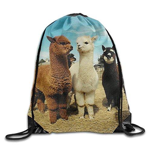 Yuanmeiju Cute Alpaca Drawstring Backpack Rucksack Shoulder Bags Training Gym Sack for Man and Women