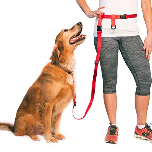 The Buddy System Adjustable Hands Free Dog Leash, Hand-Free Leash for Running, Jogging, Walking, Hiking and Training Service Dogs, Versatile All Dog Sizes - Made in USA - Regular, Red