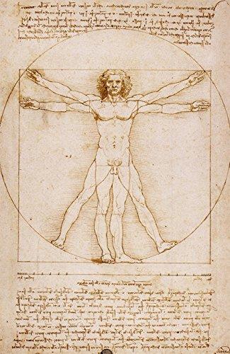Bilderdepot24 Vlies Fototapete Leonardo da Vinci - Alte Meister - Vitruvianischer Mensch - 130x200 cm - mit Kleister – Poster – Foto auf Tapete – Wandbild – Wandtapete – Vliestapete