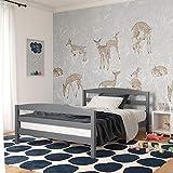 Dorel Living Palm Bay Wood, Bedroom Furniture, Full Size Frame, Gray Bed