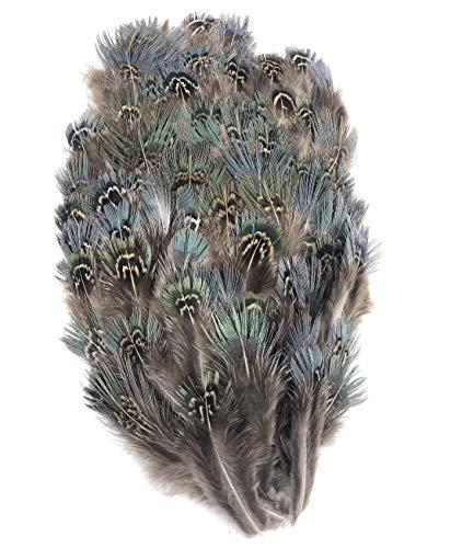 ERGEOB 100 stück 6-8cm Großfasanenfedern Geflügel grünen Seidenwolle basteln Feder