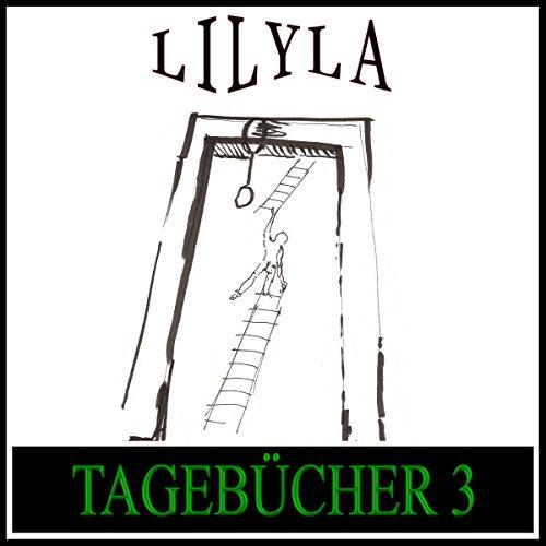 Tagebücher 1914, 1916, 1917-1923 audiobook cover art