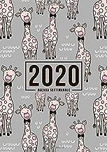 Agenda settimanale 2020: 1 gennaio 2020 al 31 dicembre 2020: Agenda settimanale e mensile, Organizer & Diario: Giraffa carina con Papillon 137-1 (Italian Edition)